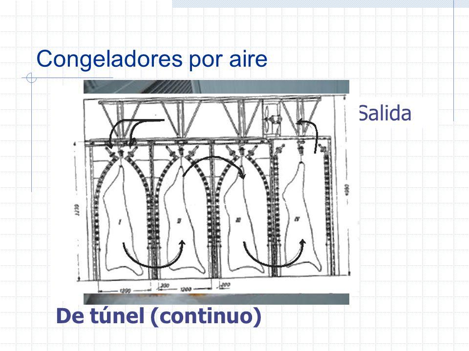 Congeladores por aire Entrada Salida De túnel (continuo)