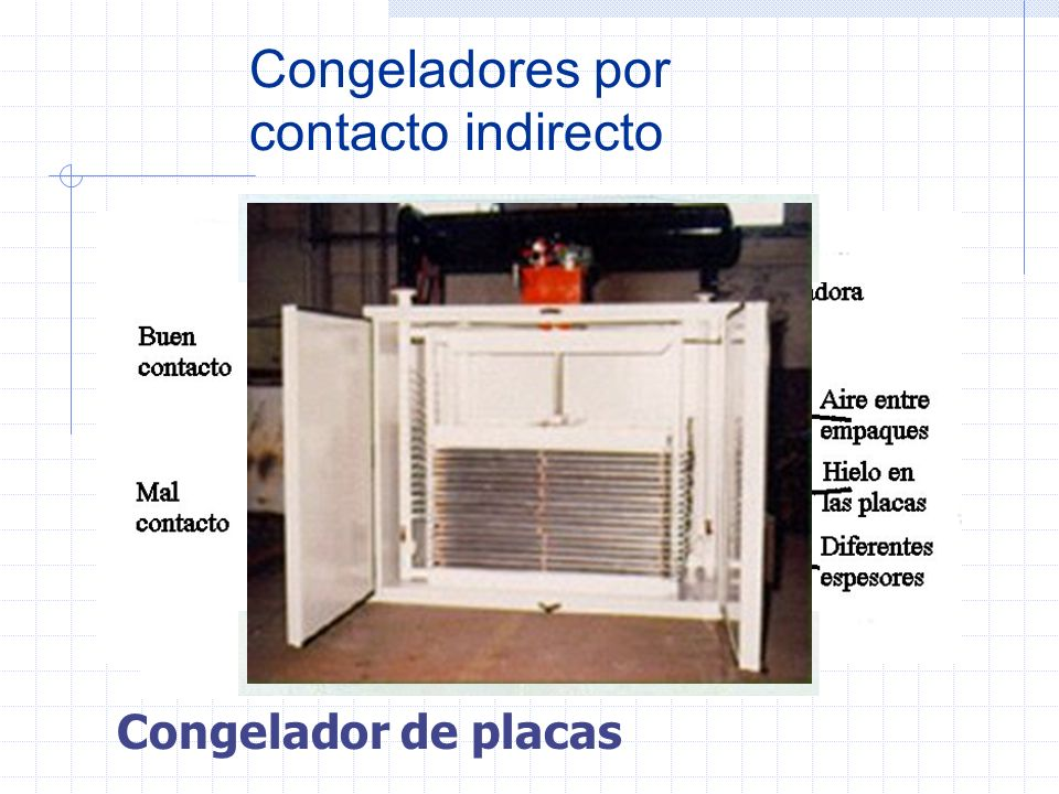 Congeladores por contacto indirecto