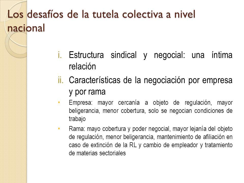 Los desafíos de la tutela colectiva a nivel nacional