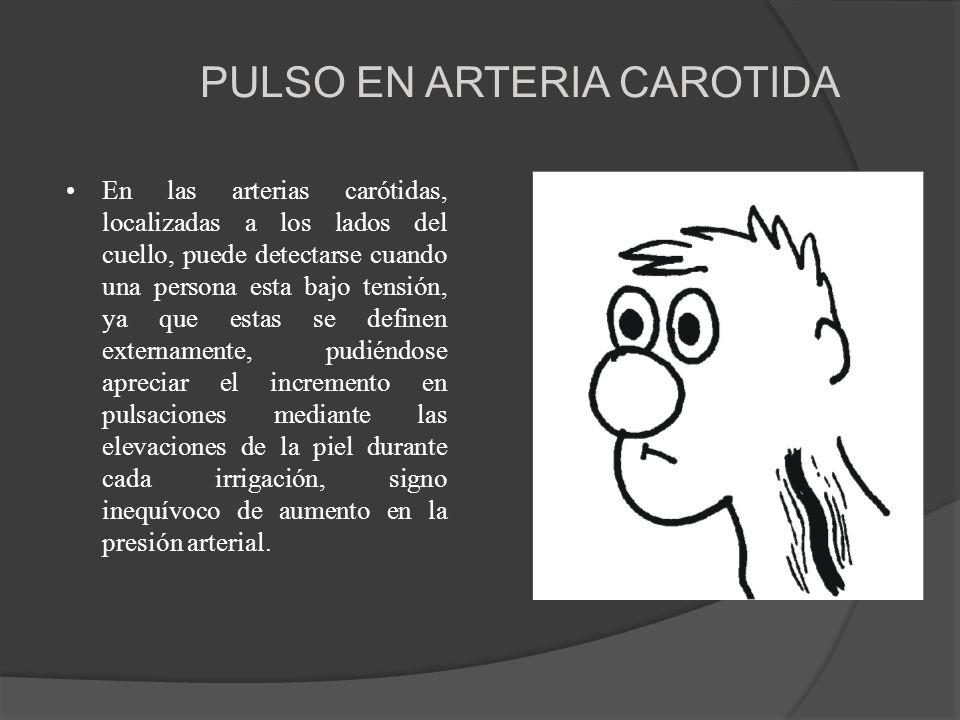 PULSO EN ARTERIA CAROTIDA