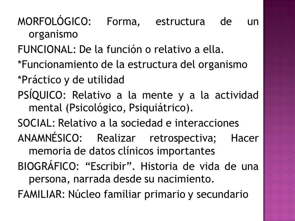 MORFOLÓGICO: Forma, estructura de un organismo FUNCIONAL: De la función o relativo a ella.