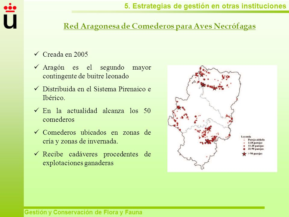 Red Aragonesa de Comederos para Aves Necrófagas