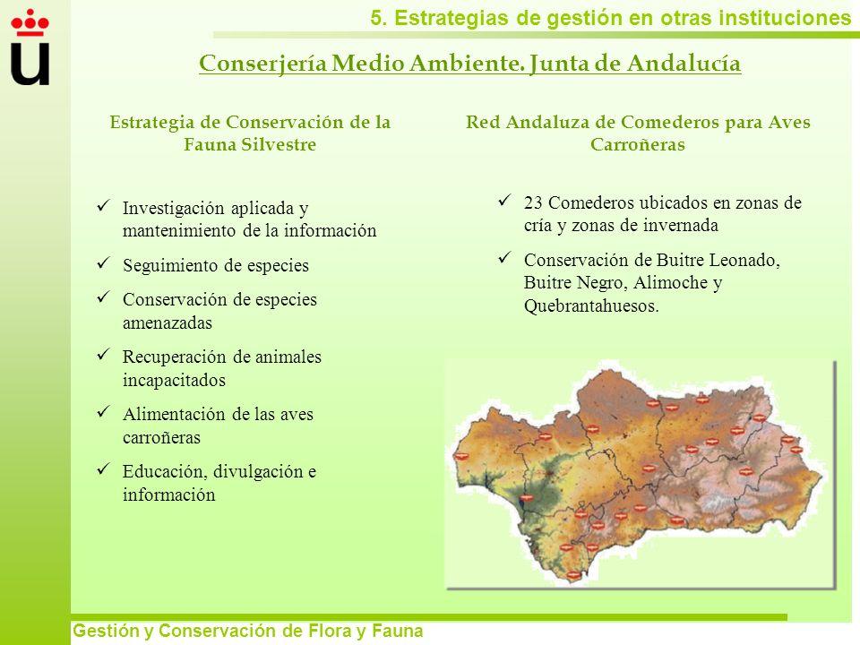 Conserjería Medio Ambiente. Junta de Andalucía