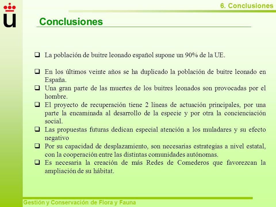 Conclusiones 6. Conclusiones