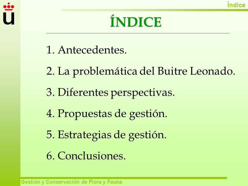 ÍNDICE 1. Antecedentes. 2. La problemática del Buitre Leonado.