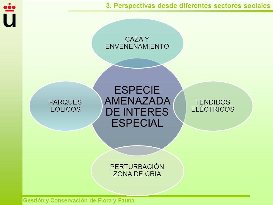 3. Perspectivas desde diferentes sectores sociales