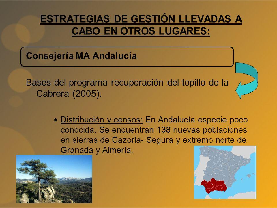 ESTRATEGIAS DE GESTIÓN LLEVADAS A CABO EN OTROS LUGARES: