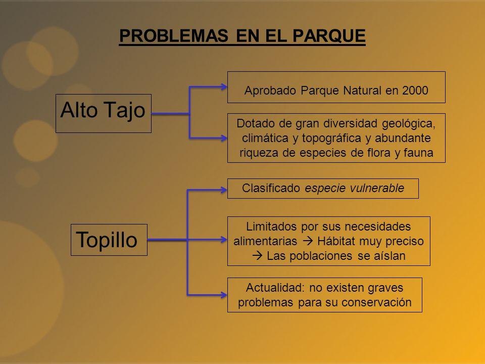 Alto Tajo Topillo PROBLEMAS EN EL PARQUE