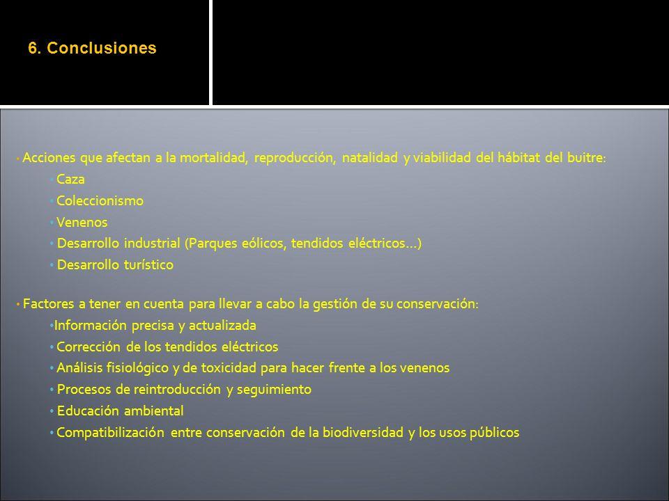6. Conclusiones Caza Coleccionismo Venenos