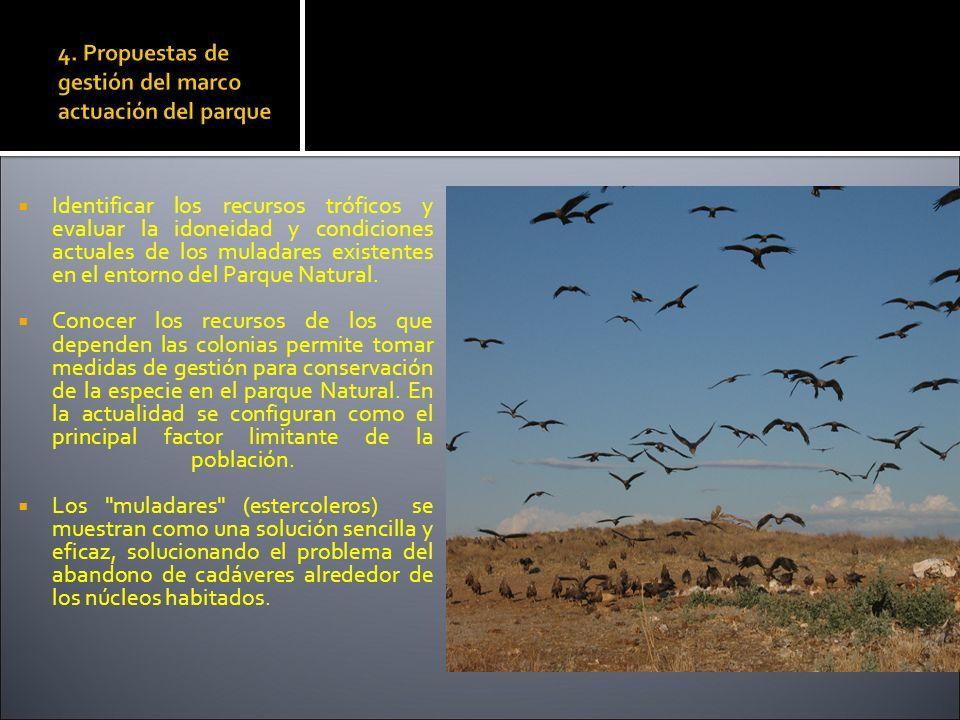 4. Propuestas de gestión del marco actuación del parque