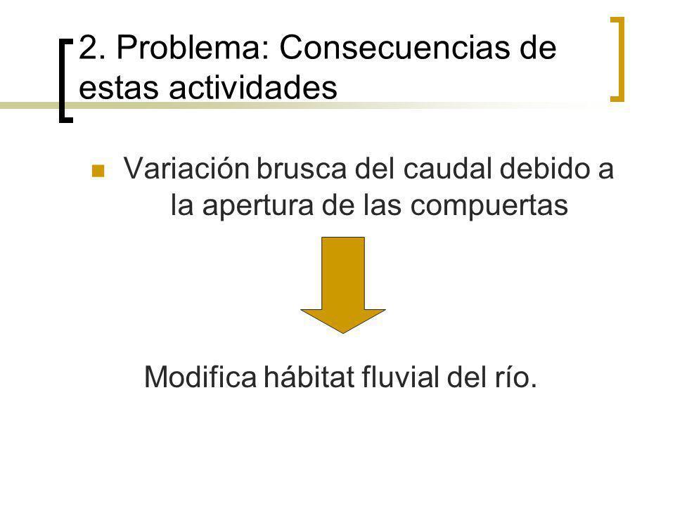 2. Problema: Consecuencias de estas actividades