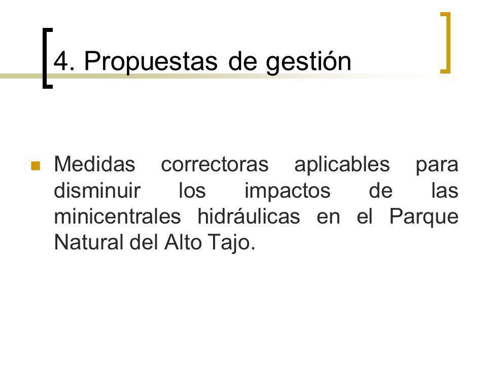 4. Propuestas de gestión