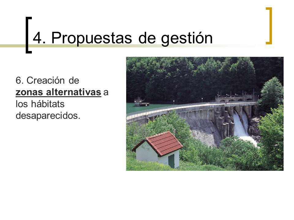 4. Propuestas de gestión 6. Creación de zonas alternativas a los hábitats desaparecidos.