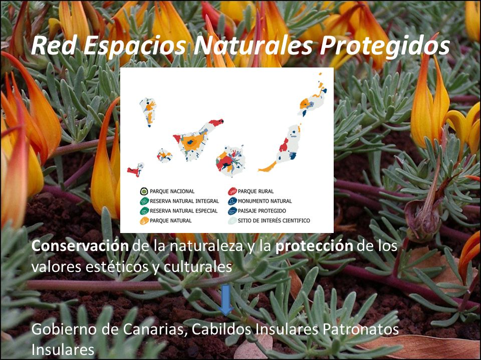 Red Espacios Naturales Protegidos