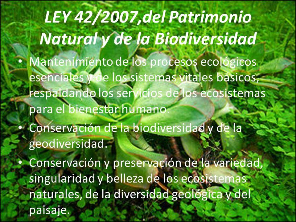LEY 42/2007,del Patrimonio Natural y de la Biodiversidad
