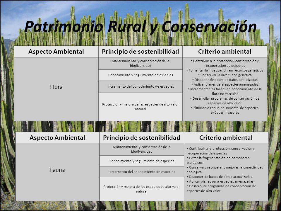 Patrimonio Rural y Conservación