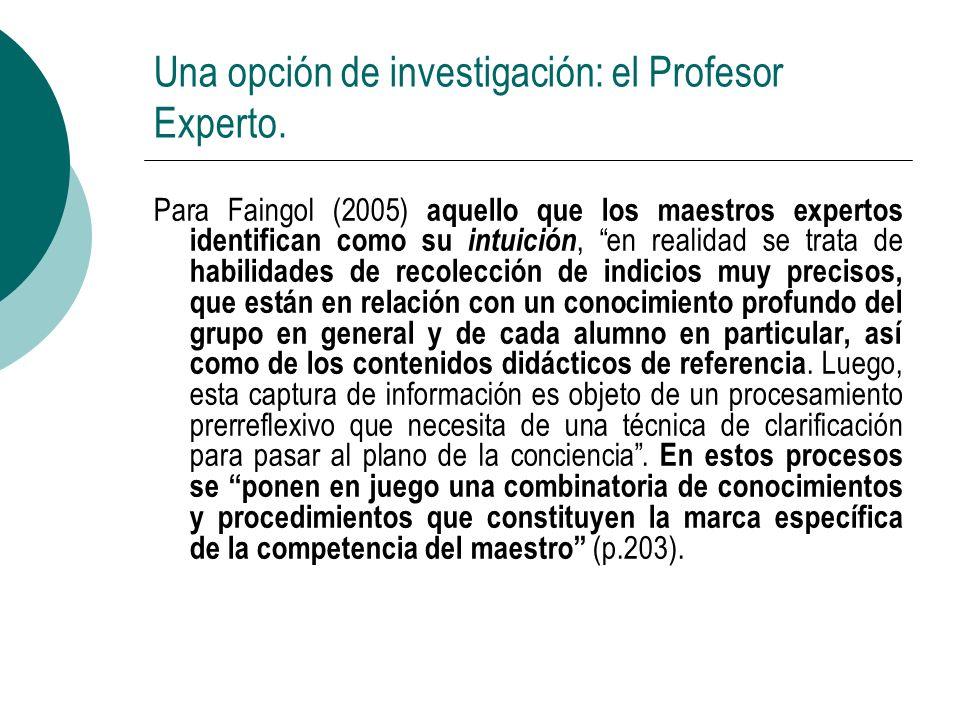 Una opción de investigación: el Profesor Experto.