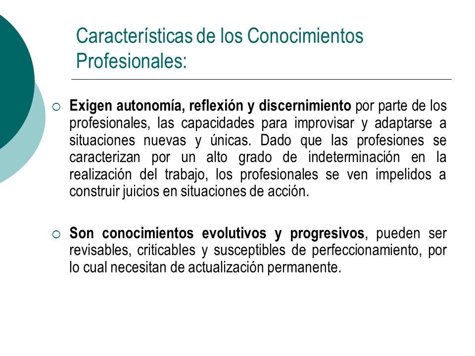 Características de los Conocimientos Profesionales: