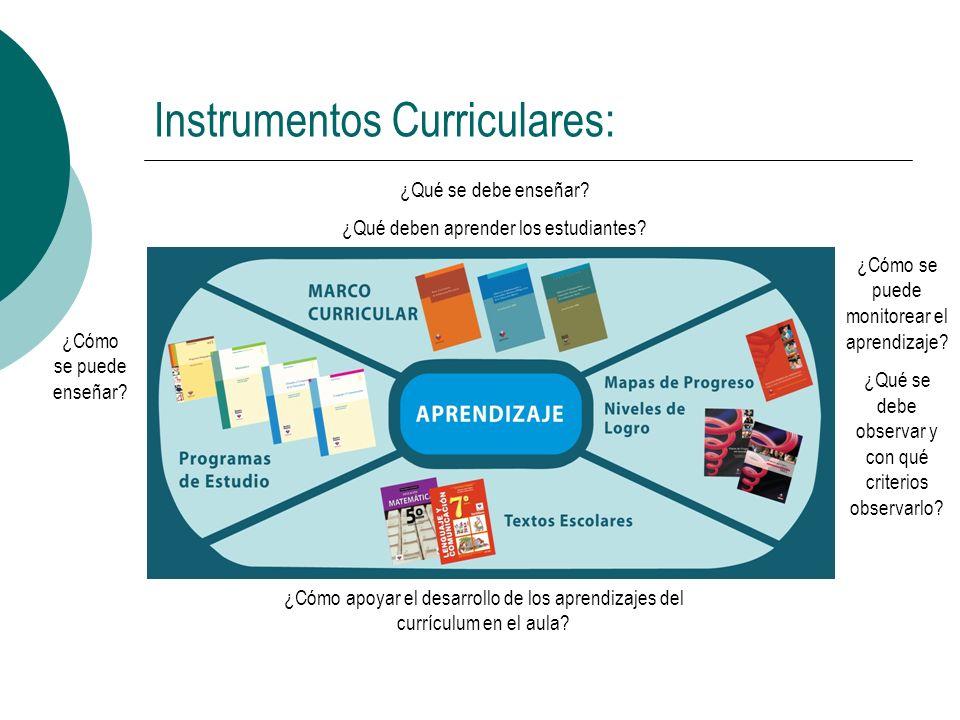 Instrumentos Curriculares:
