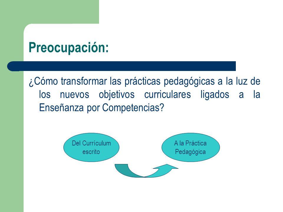 Preocupación: ¿Cómo transformar las prácticas pedagógicas a la luz de los nuevos objetivos curriculares ligados a la Enseñanza por Competencias