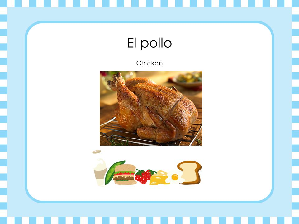 El pollo Chicken