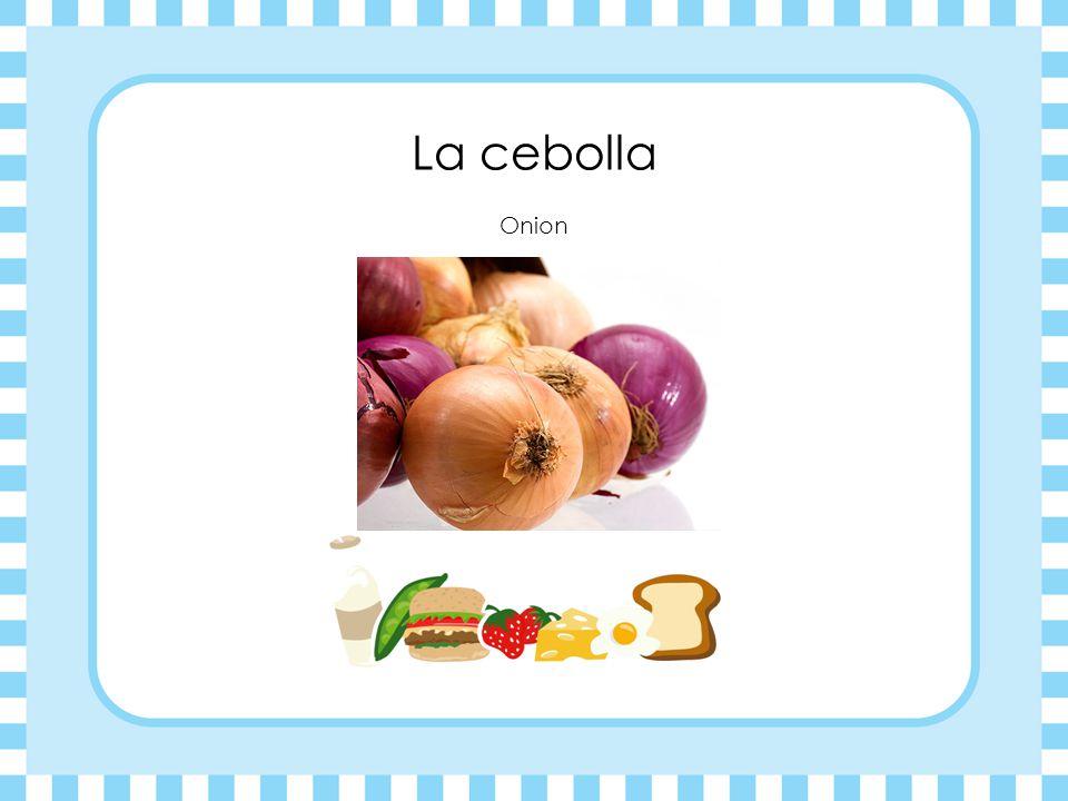 La cebolla Onion