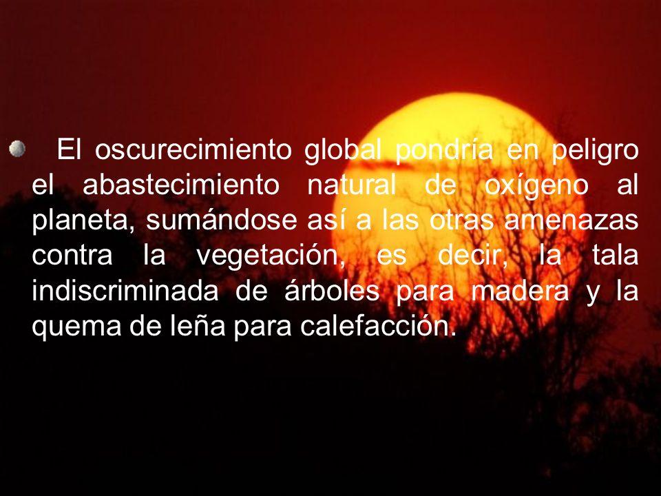 El oscurecimiento global pondría en peligro el abastecimiento natural de oxígeno al planeta, sumándose así a las otras amenazas contra la vegetación, es decir, la tala indiscriminada de árboles para madera y la quema de leña para calefacción.