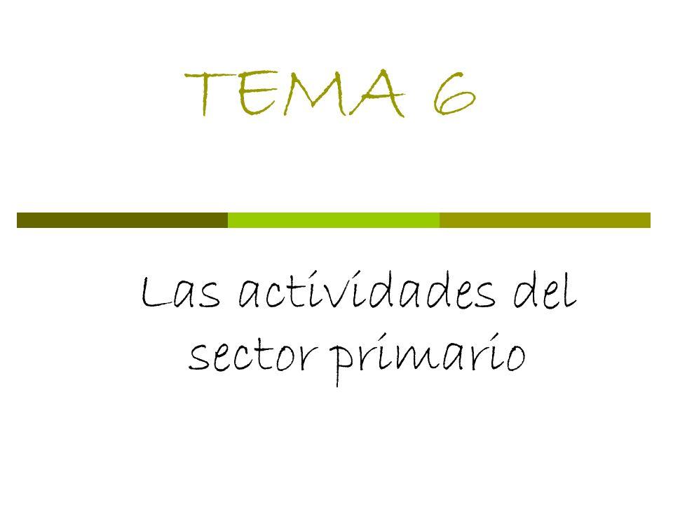 Las actividades del sector primario