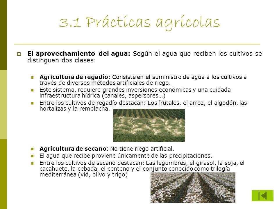 3.1 Prácticas agrícolas El aprovechamiento del agua: Según el agua que reciben los cultivos se distinguen dos clases: