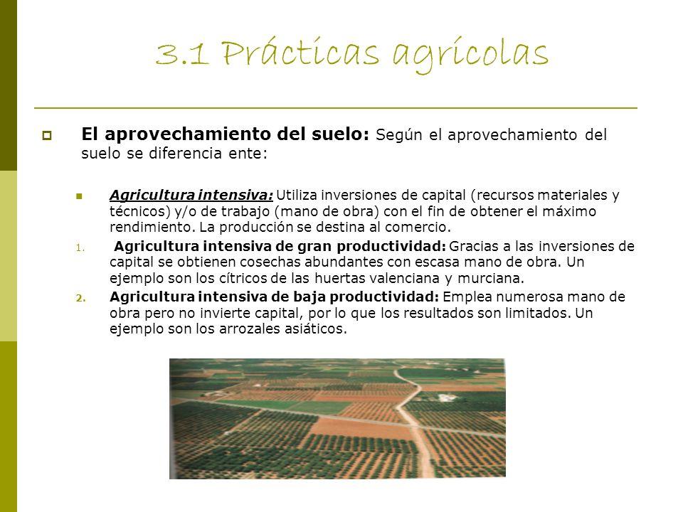 3.1 Prácticas agrícolas El aprovechamiento del suelo: Según el aprovechamiento del suelo se diferencia ente: