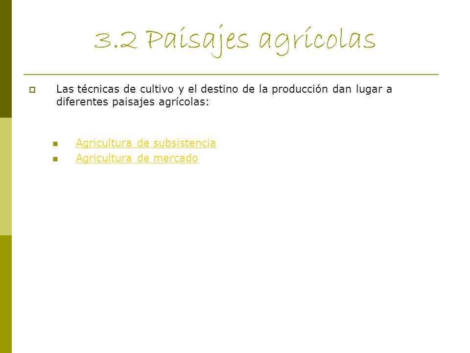3.2 Paisajes agrícolas Las técnicas de cultivo y el destino de la producción dan lugar a diferentes paisajes agrícolas: