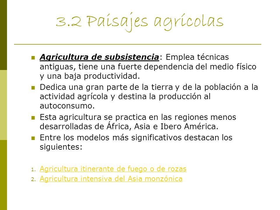 3.2 Paisajes agrícolas Agricultura de subsistencia: Emplea técnicas antiguas, tiene una fuerte dependencia del medio físico y una baja productividad.