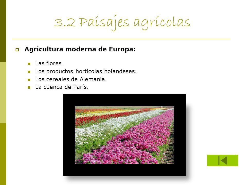 3.2 Paisajes agrícolas Agricultura moderna de Europa: Las flores.