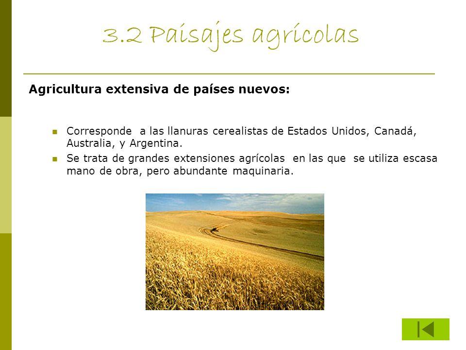 3.2 Paisajes agrícolas Agricultura extensiva de países nuevos: