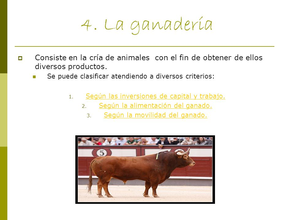 4. La ganadería Consiste en la cría de animales con el fin de obtener de ellos diversos productos.