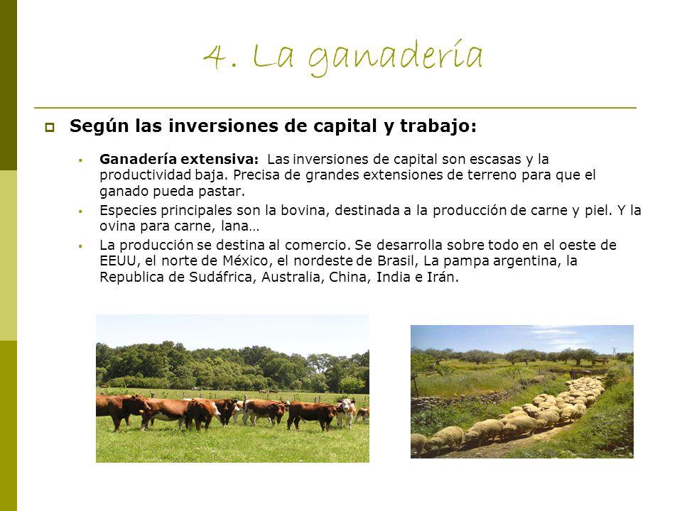 4. La ganadería Según las inversiones de capital y trabajo: