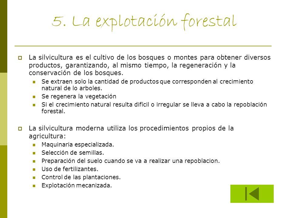 5. La explotación forestal