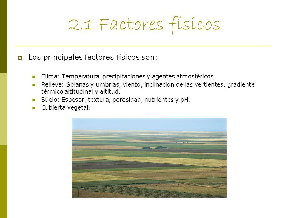 2.1 Factores físicos Los principales factores físicos son: