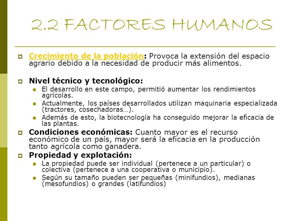 2.2 FACTORES HUMANOS Crecimiento de la población: Provoca la extensión del espacio agrario debido a la necesidad de producir más alimentos.