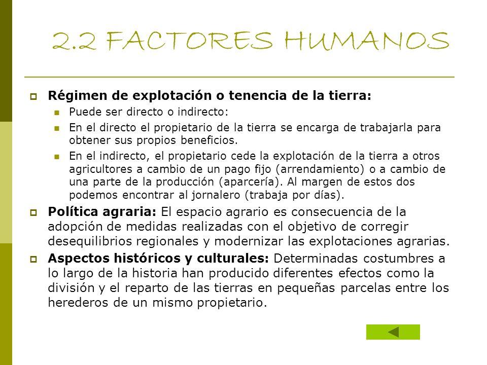 2.2 FACTORES HUMANOS Régimen de explotación o tenencia de la tierra: