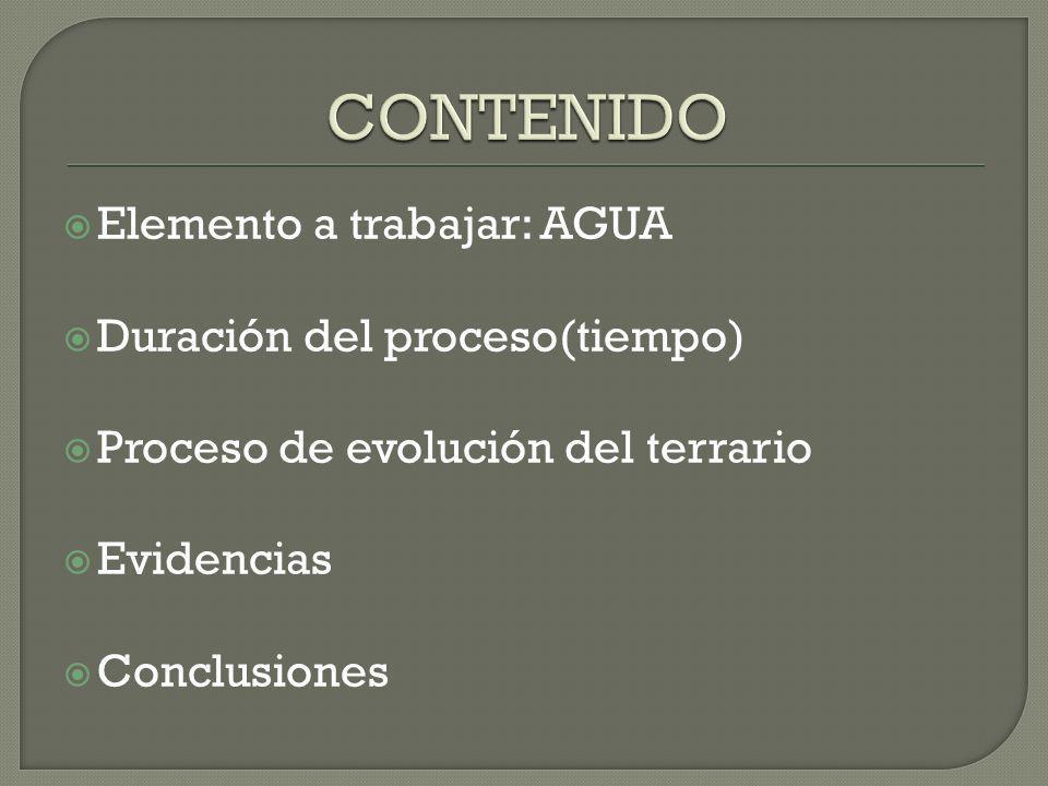 CONTENIDO Elemento a trabajar: AGUA Duración del proceso(tiempo)