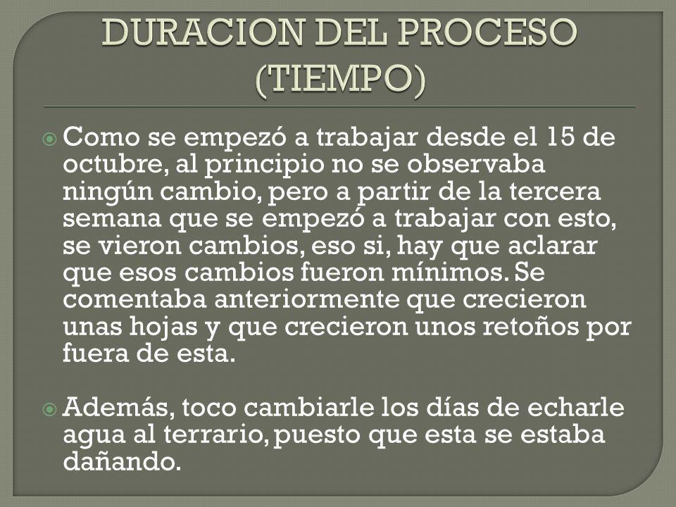 DURACION DEL PROCESO (TIEMPO)