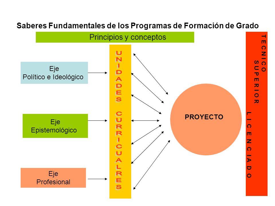 Saberes Fundamentales de los Programas de Formación de Grado