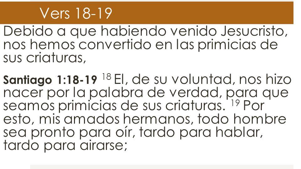 Vers 18-19 Debido a que habiendo venido Jesucristo, nos hemos convertido en las primicias de sus criaturas,