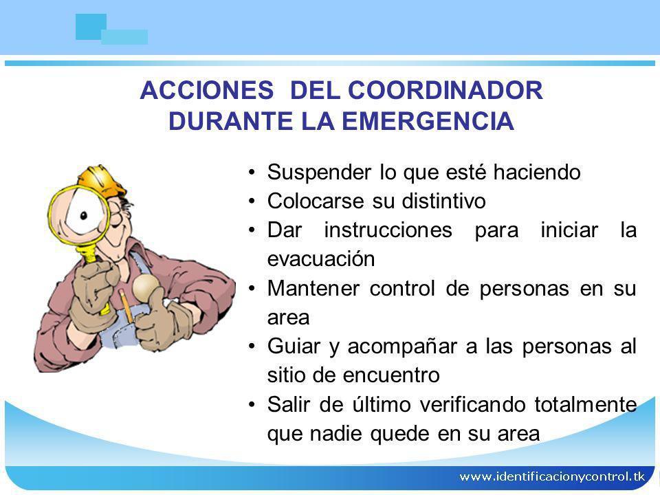 ACCIONES DEL COORDINADOR