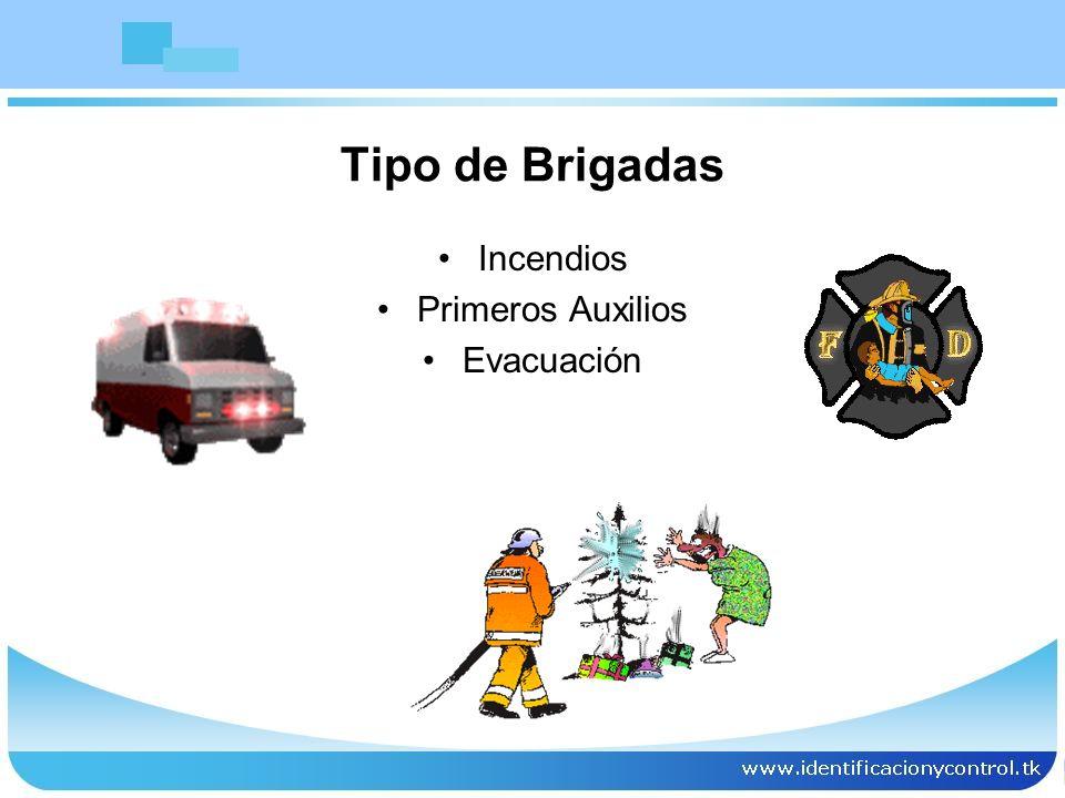 Tipo de Brigadas Incendios Primeros Auxilios Evacuación