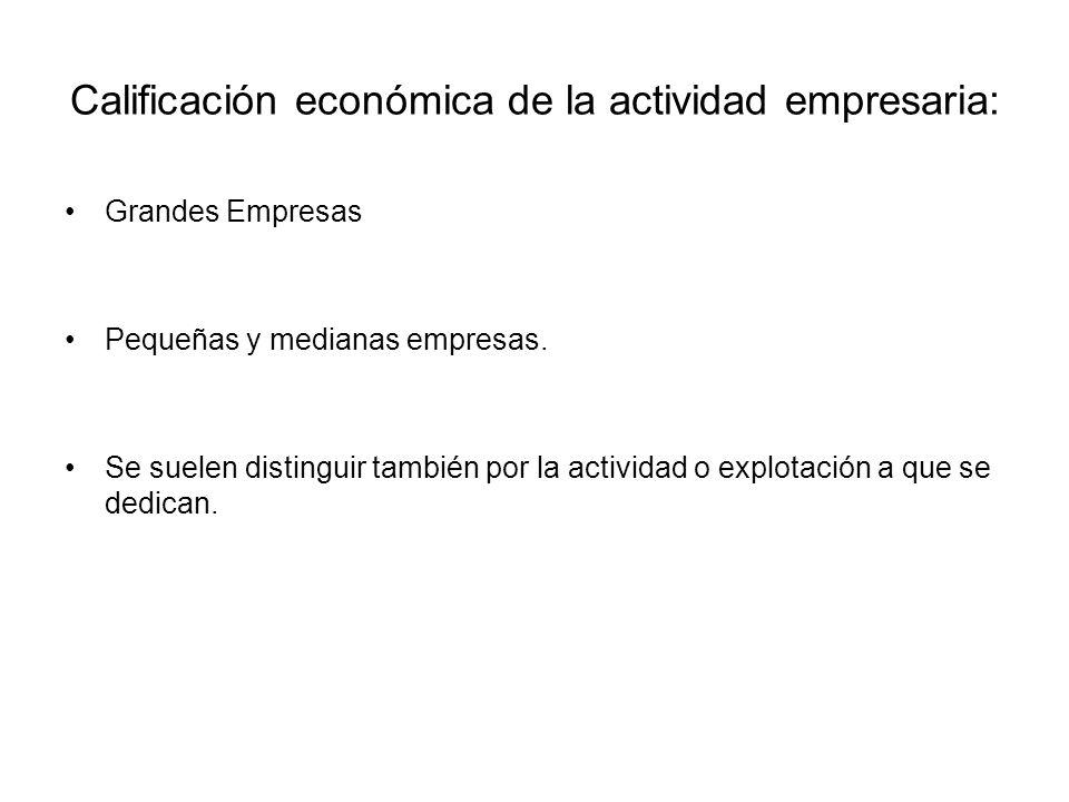Calificación económica de la actividad empresaria: