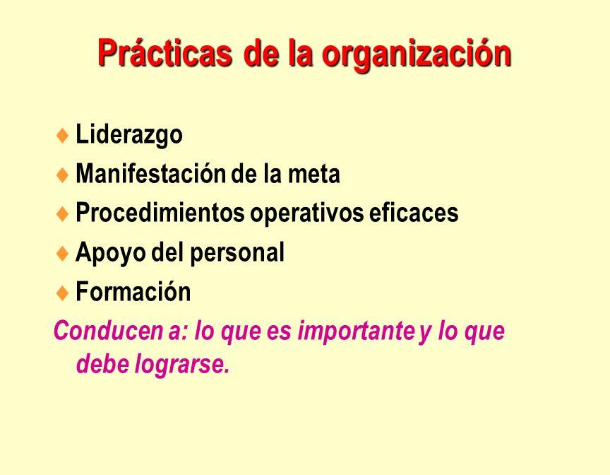 Prácticas de la organización