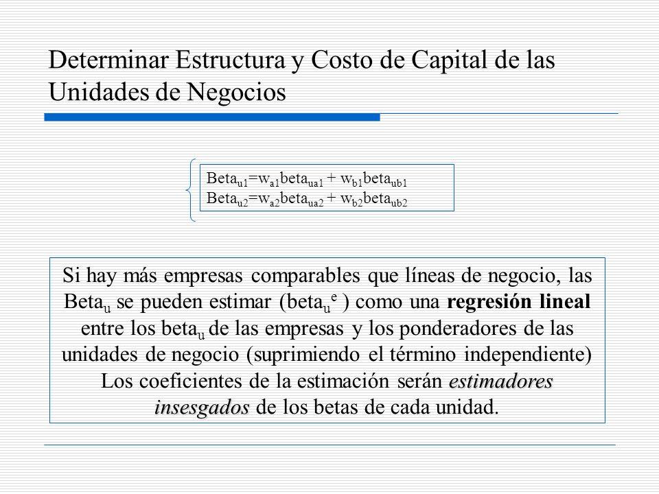 Determinar Estructura y Costo de Capital de las Unidades de Negocios
