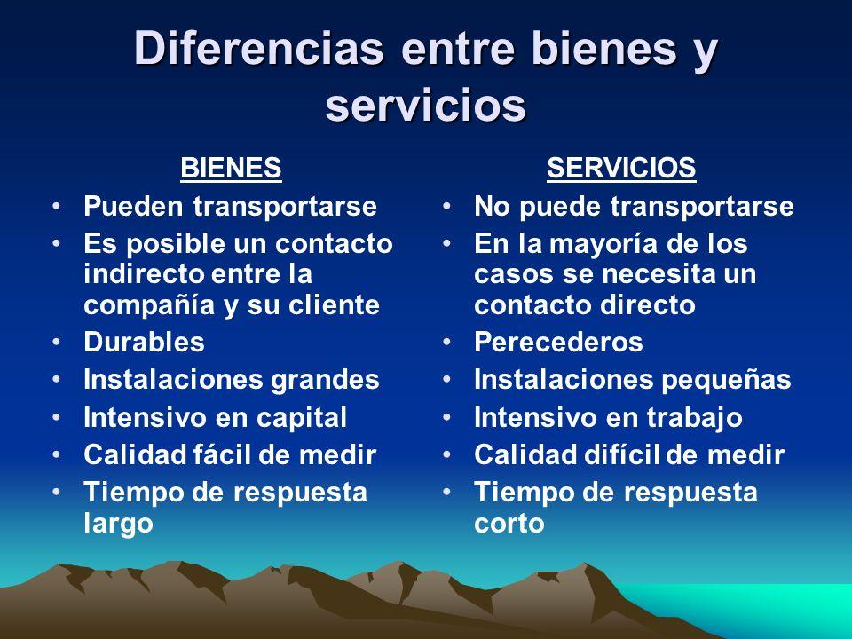 Diferencias entre bienes y servicios